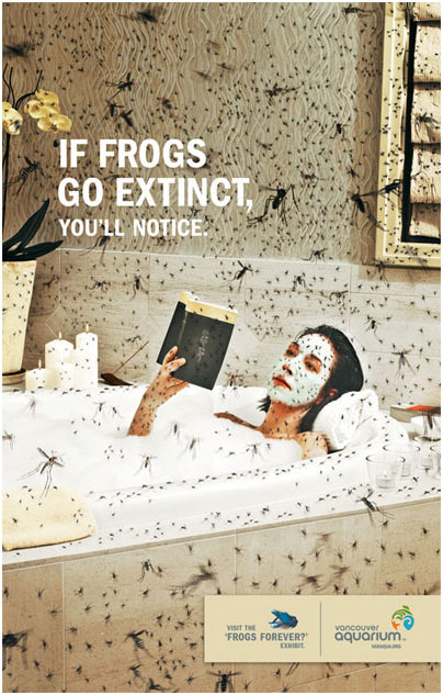 7-ads-frog-insects