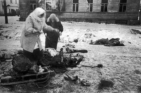 Assedio di leningrado 1941