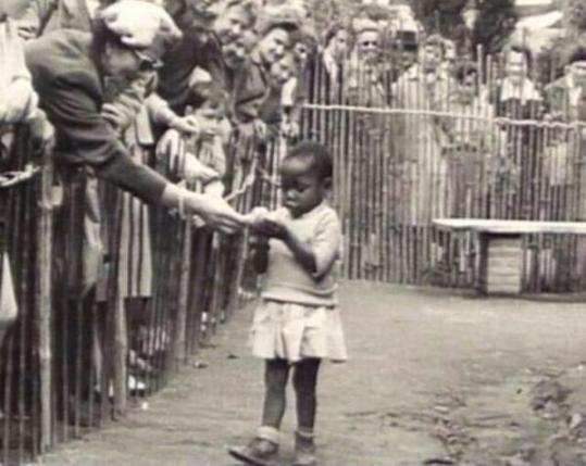 La brava signora sta porgendo una banana, come se fosse una scimmia.