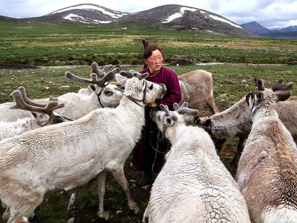 Tsaatan people, Mongolia